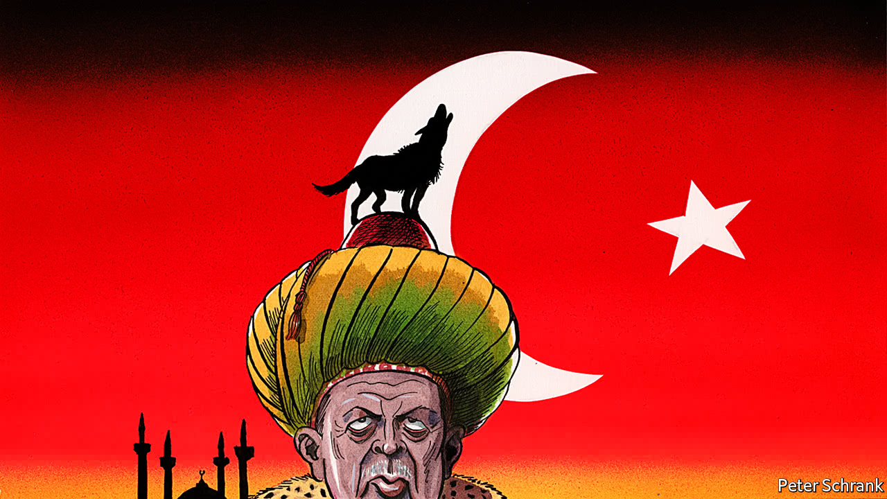 erdogan sultan cartoon